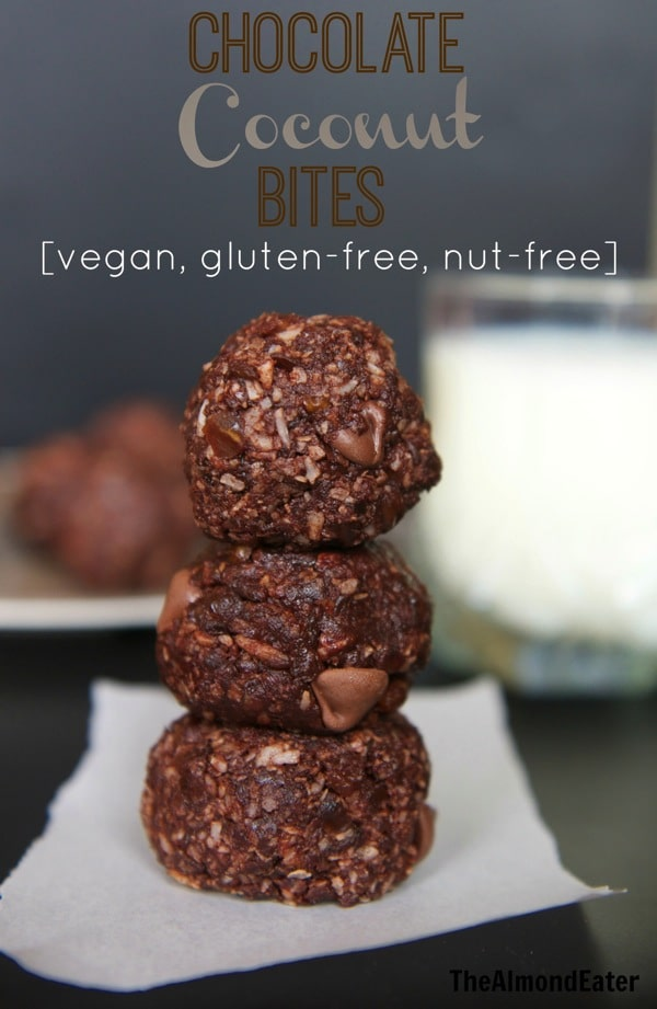 Chocolate Coconut Bites  vegan gluten free nut free