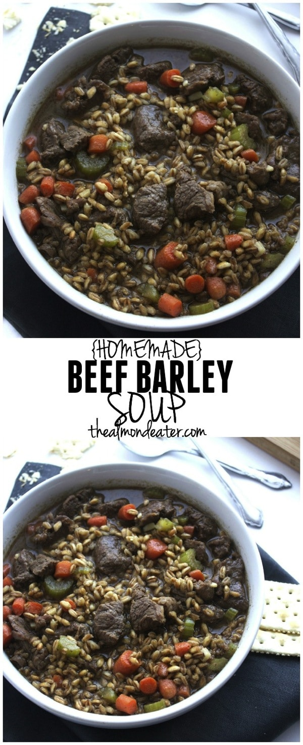 Homemade Beef Barley Soup 123