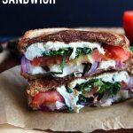 Mediterranean-Grilled-Cheese-Sandwich-91.jpg
