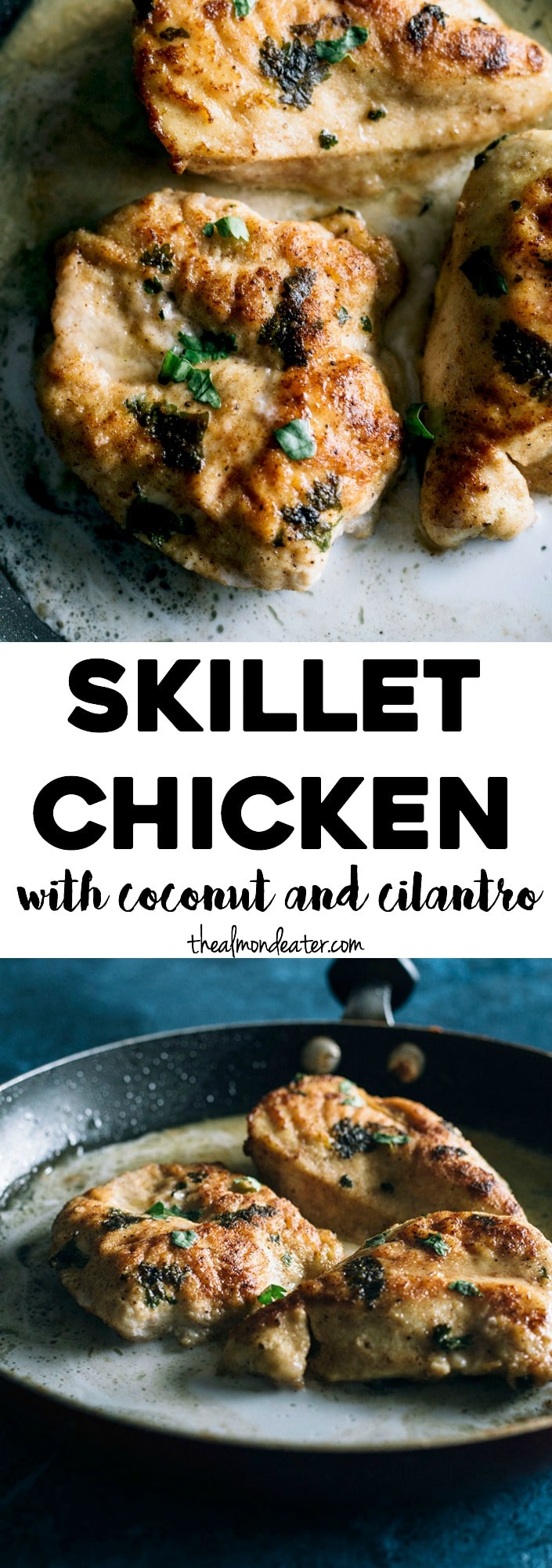 ONE SKILLET Chicken marinated in coconut milk and cilantro, ready in just 30 minutes! | thealmondeater.com
