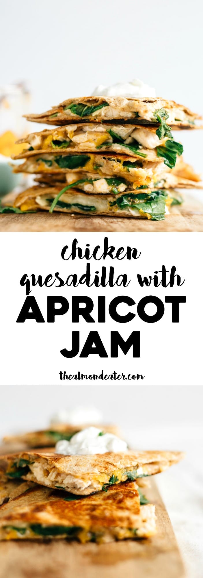 Chicken Quesadilla with Apricot Jam | Adding apricot jam to this quesadilla definitely takes it up a notch! So so good