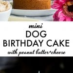 Mini Dog Birthday Cake | the perfect way to celebrate your pup's special day! | thealmondeater.com