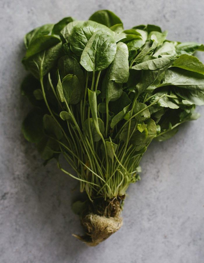 butternut-squash-farro-salad-5