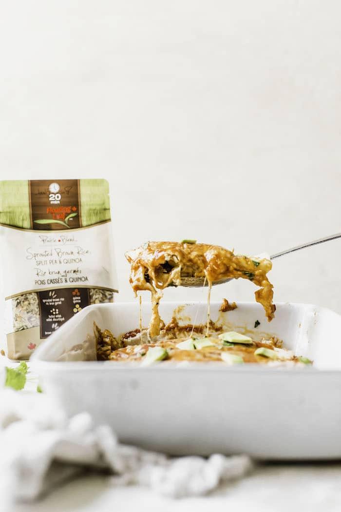 Butternut Squash Wild Rice Enchiladas   thealmondeater.com