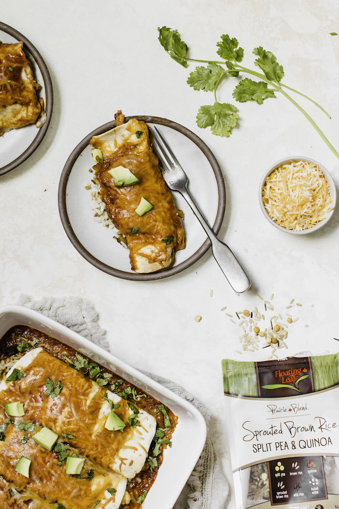 Butternut Squash Wild Rice Enchiladas | thealmondeater.com