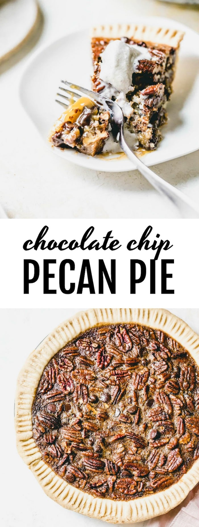 Chocolate Chip Pecan Pie - pecan pie filled with chocolate chips and made with honey instead of corn syrup!   thealmondeater.com