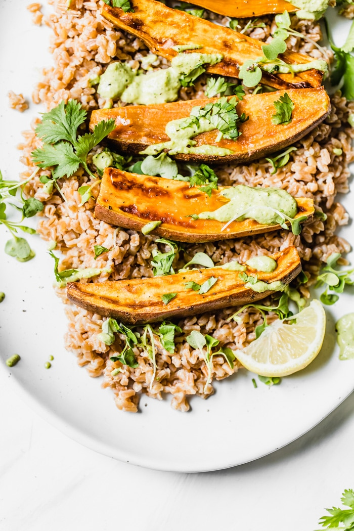 Sweet potato wedges on top of farro that have been drizzled with cilantro tahini sauce