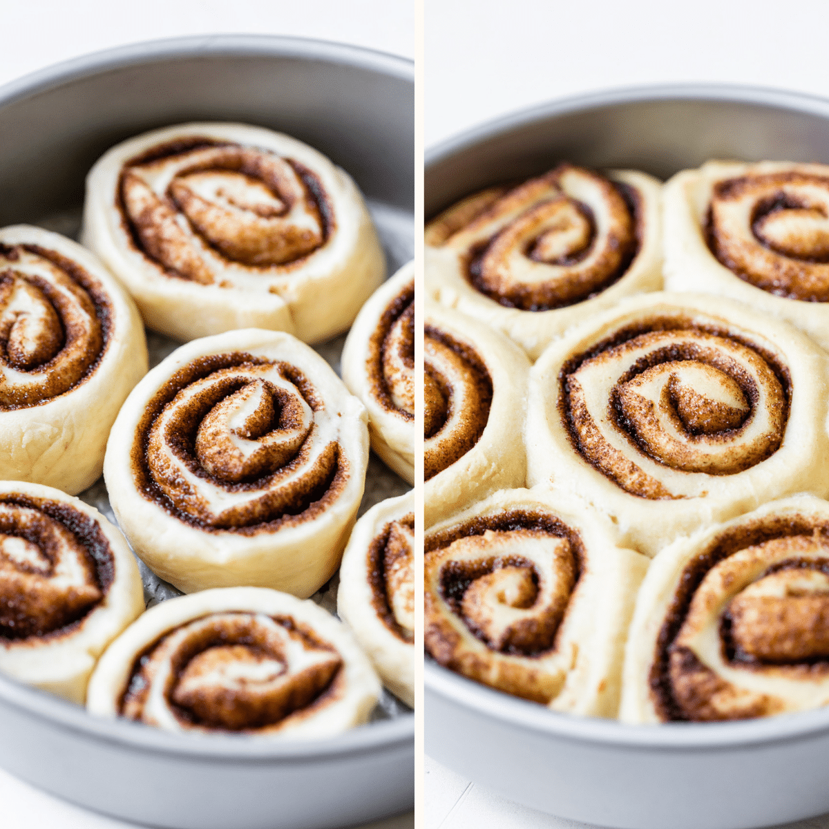 uncooked cinnamon rolls in a cake pan