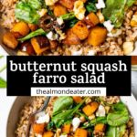 farro salad in a bowl