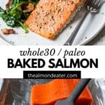salmon on a plate and on a baking sheet