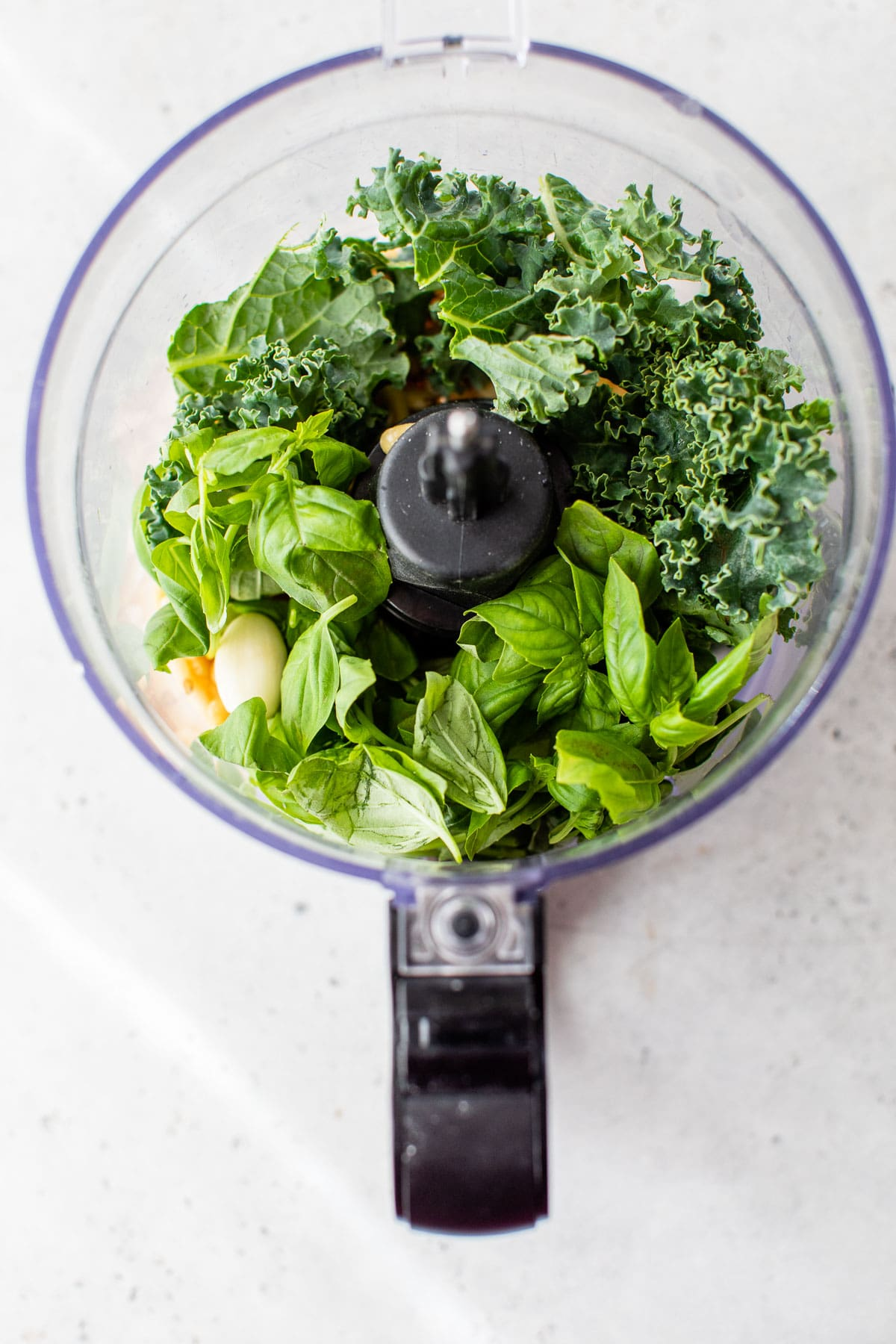 kale, basil and garlic in a food processor