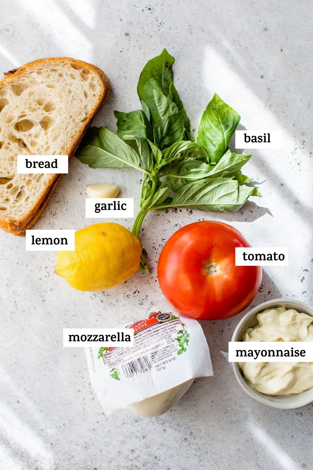 ingredients to make a sandwich