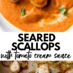 seared scallops on a plate and in a skillet